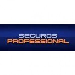 SecurOS Professional