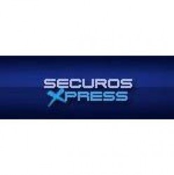 SecurOS Xpress